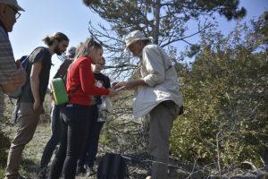 Relația sol-vegetație în habitatele dobrogene