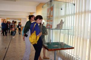 Muzeul Cetății Histria