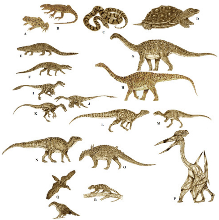 Representatives of the Late Cretaceous fauna of the Hațeg Basin, reconstructed by Jakub Kowalski