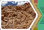 Relația mineral-biologic în abordarea holistică a cercetării naturii
