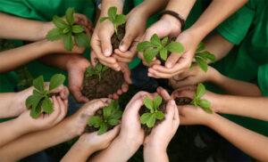 Preocupări consolidate la nivelul Uniunii Europene pentru protejarea mediului